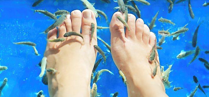Fiskpedikyr